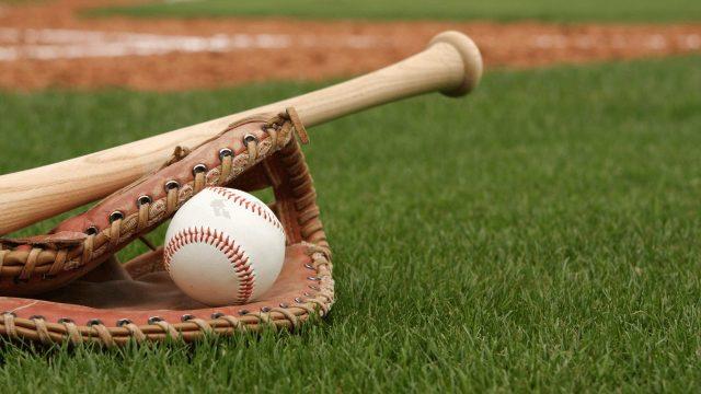 野球バットアオダモ