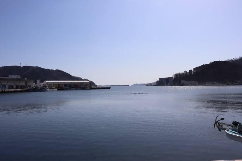女川町の海